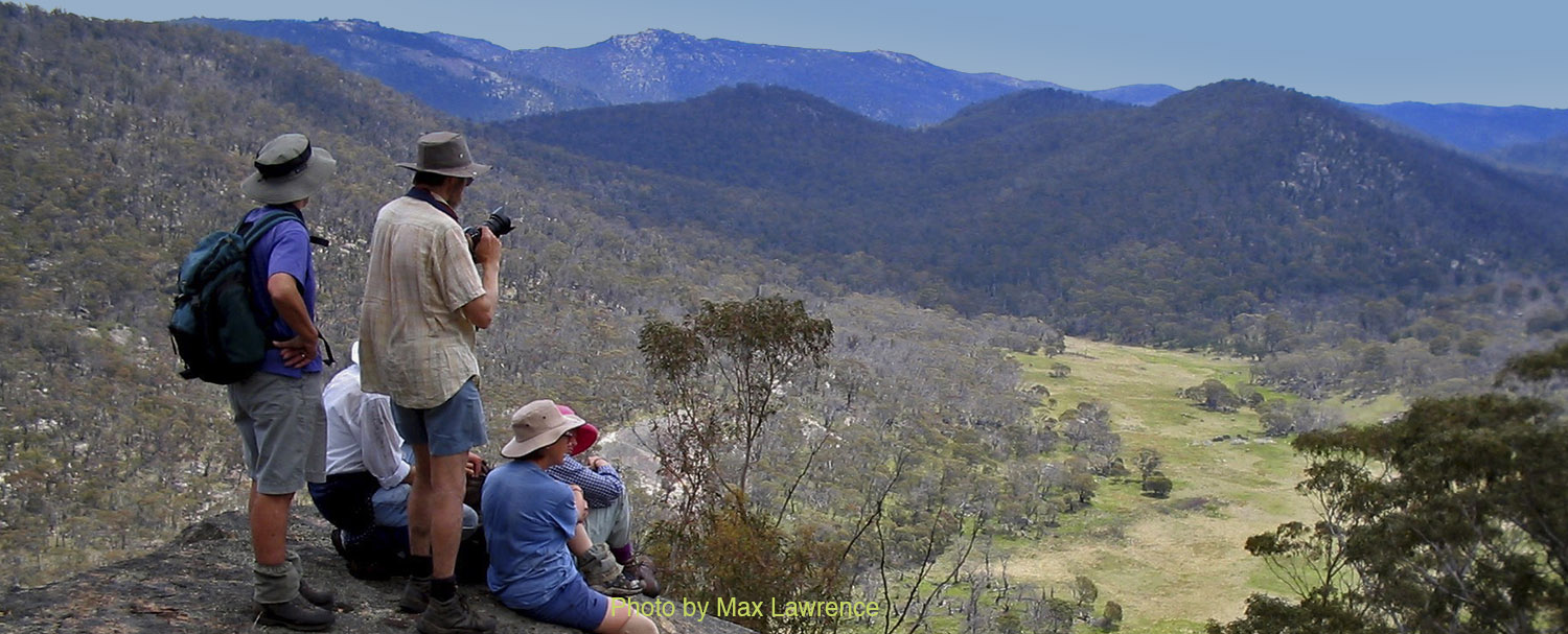 Join our bushwalks