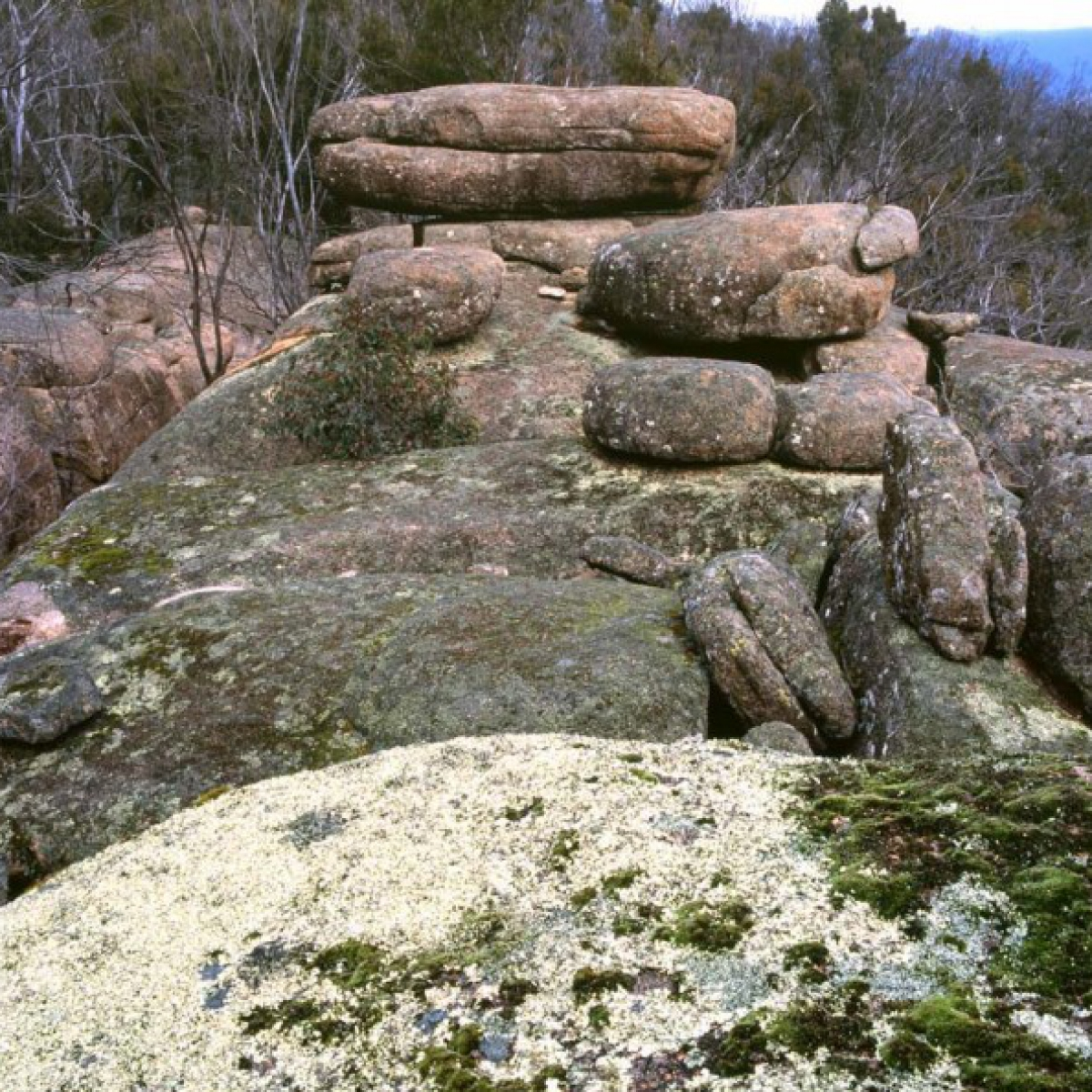 011 Granite Tor at Square Rock
