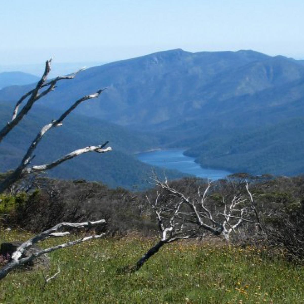 Corin Dam from Bimberi Peak