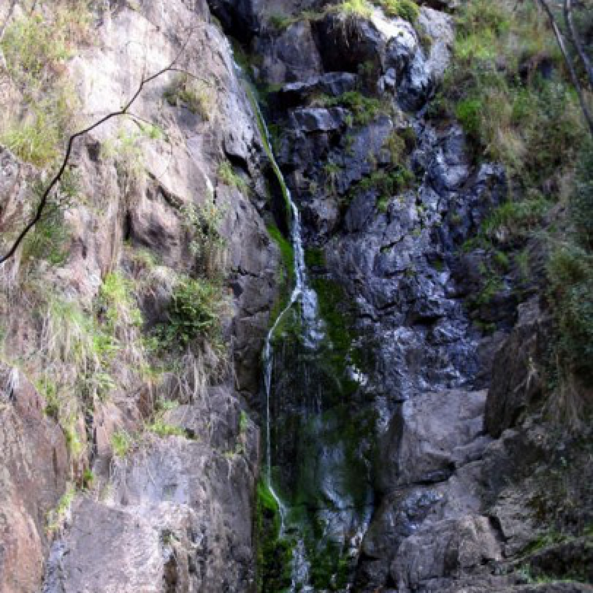 Coree Falls - Brindabella National Park