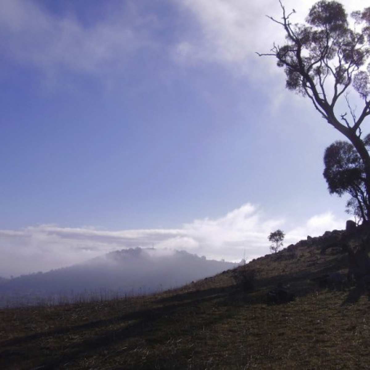 Looking north from Mount Rob Roy