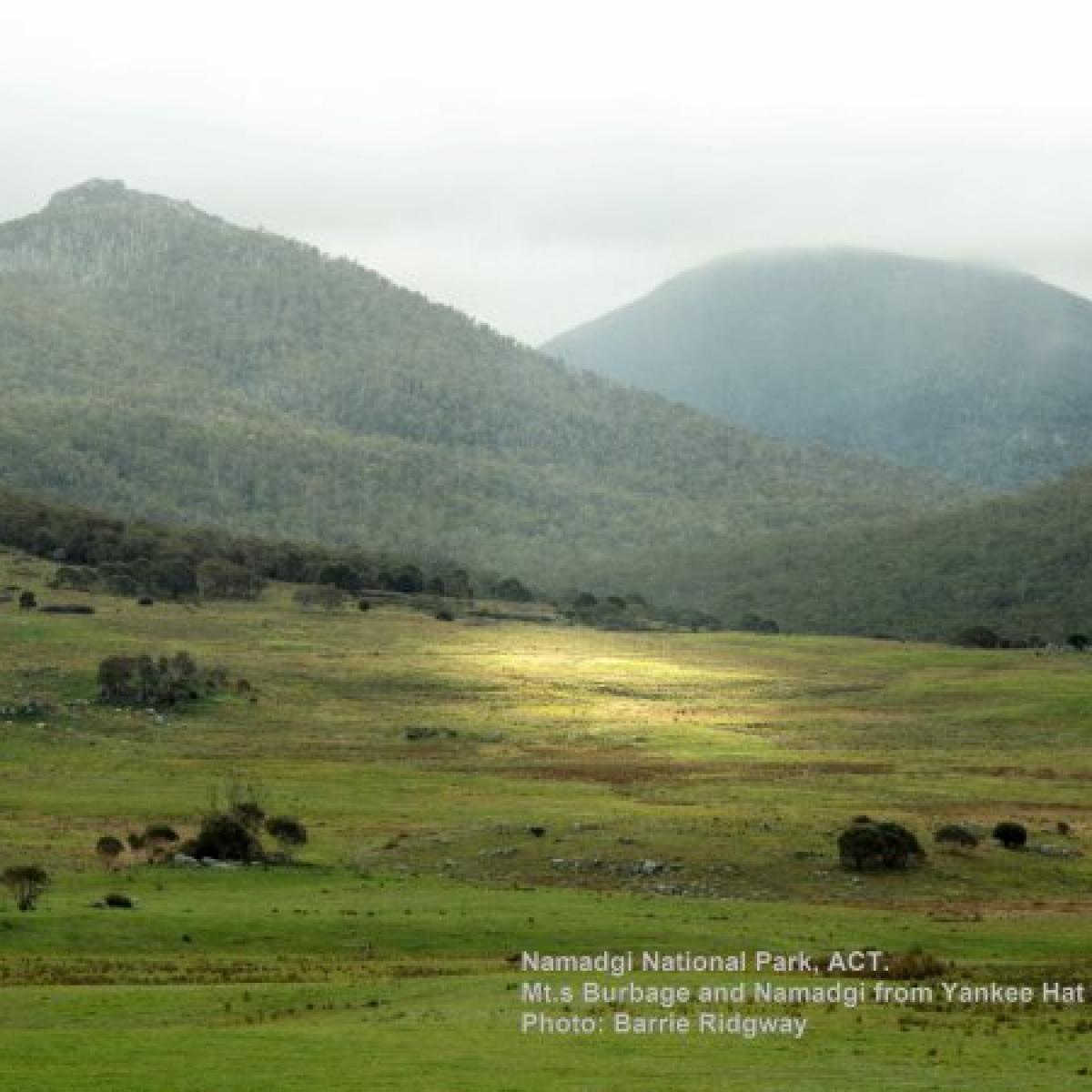 Mounts Burbidge and Namadgi