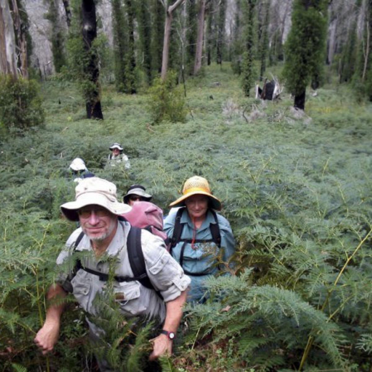 Tim & Janet lead the way up Devils Peak - Brindabella National Park