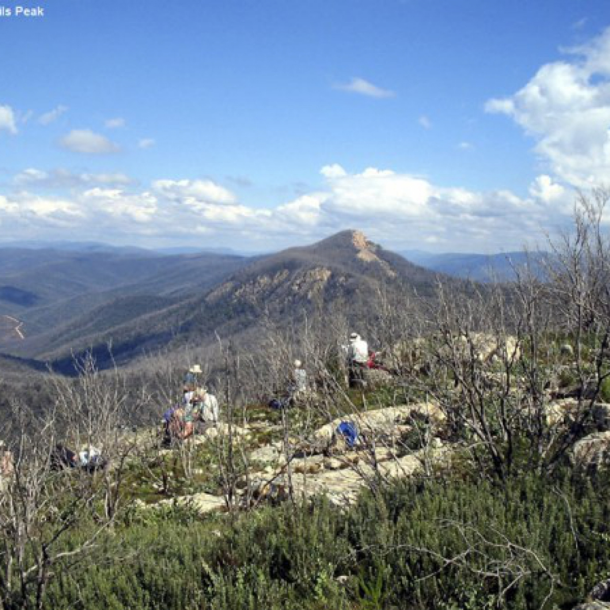 Mt Coree from Devils Peak - Brinbabella National Park