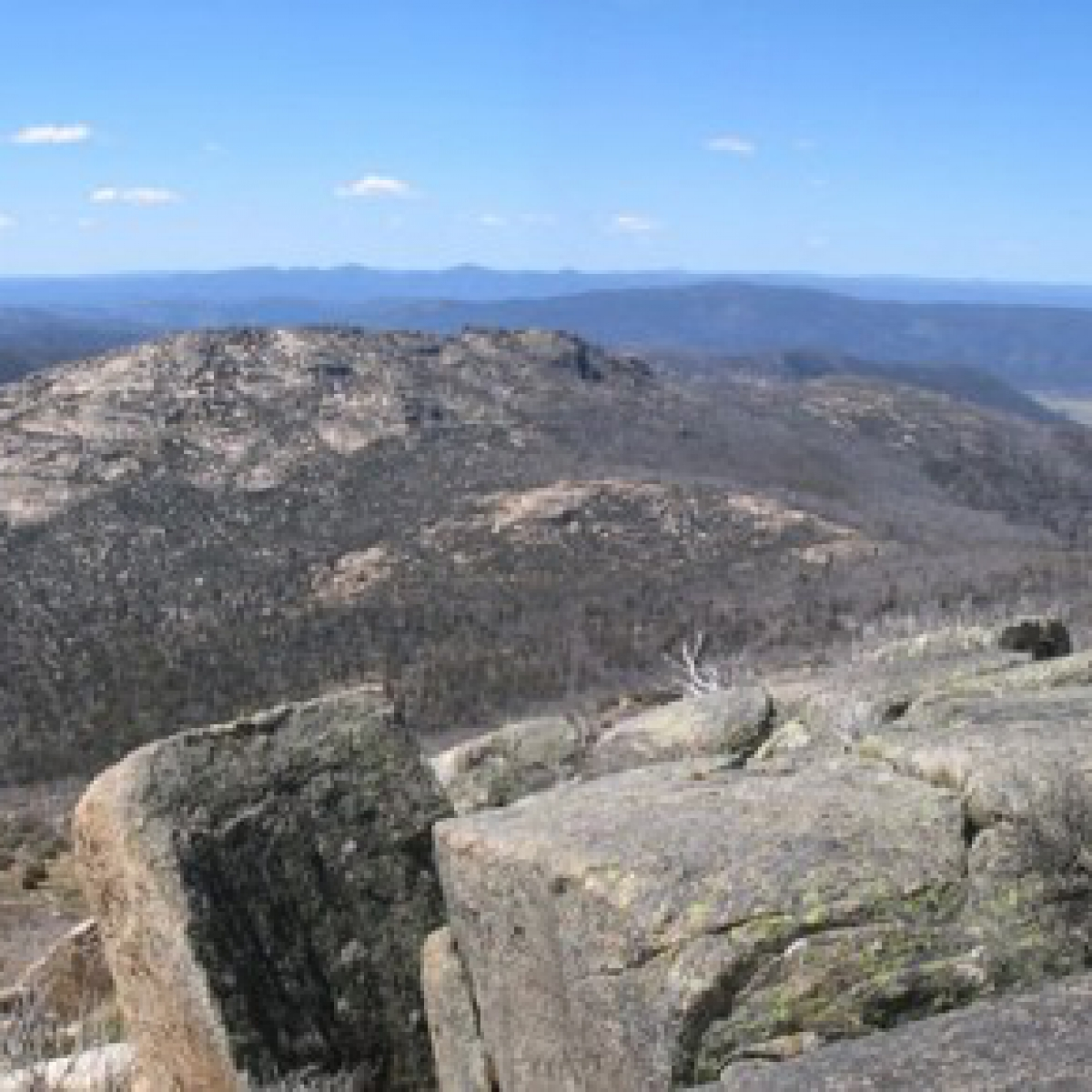 The heart of Namadgi - Mt Burbidge from Mt Kelly