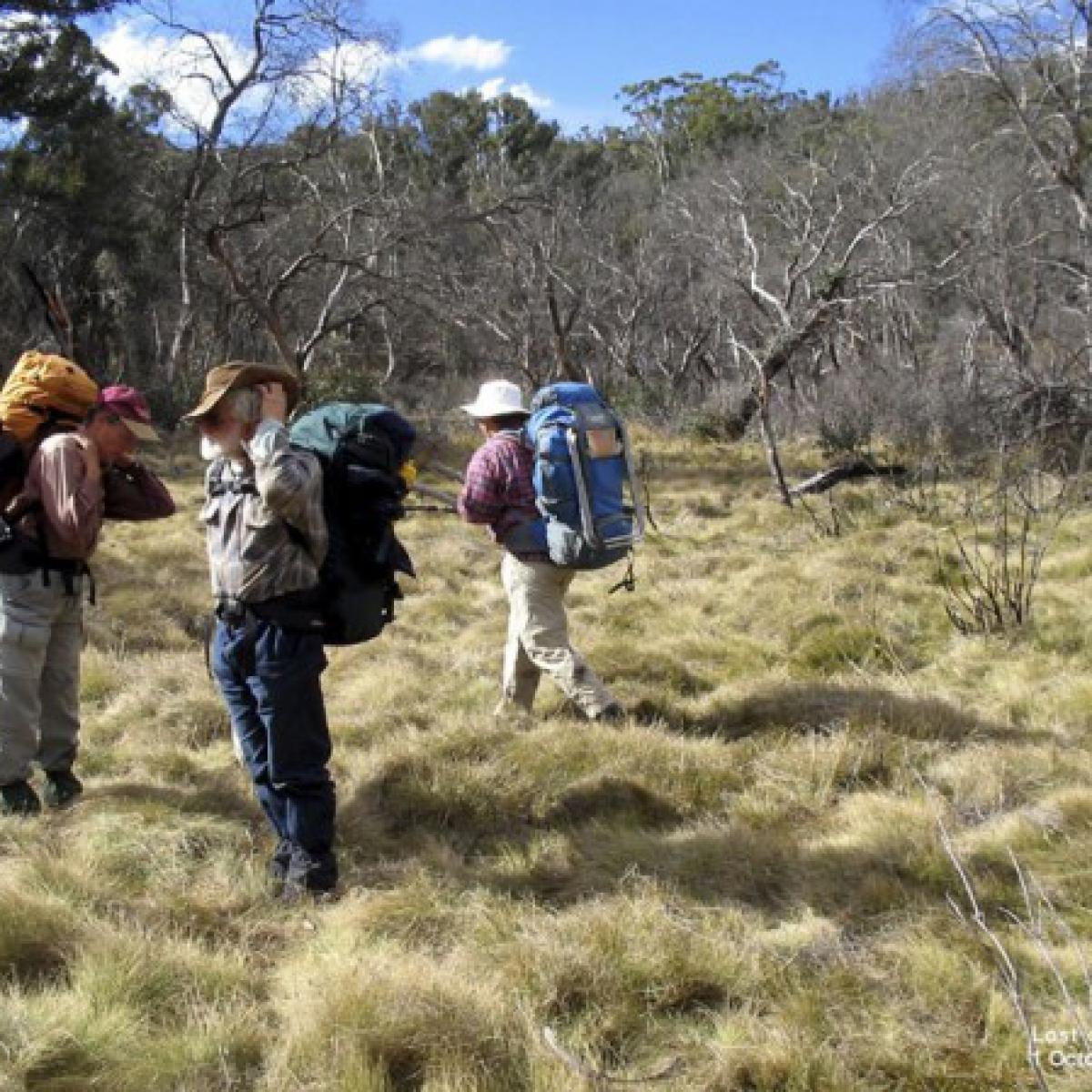 A navigational dilema? Sams Creek - Namadgi National Park