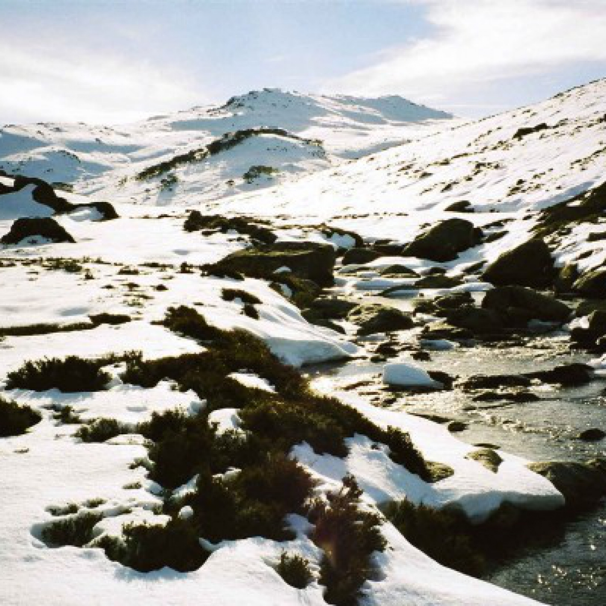 Spencer Creek, Kosciuszko NP