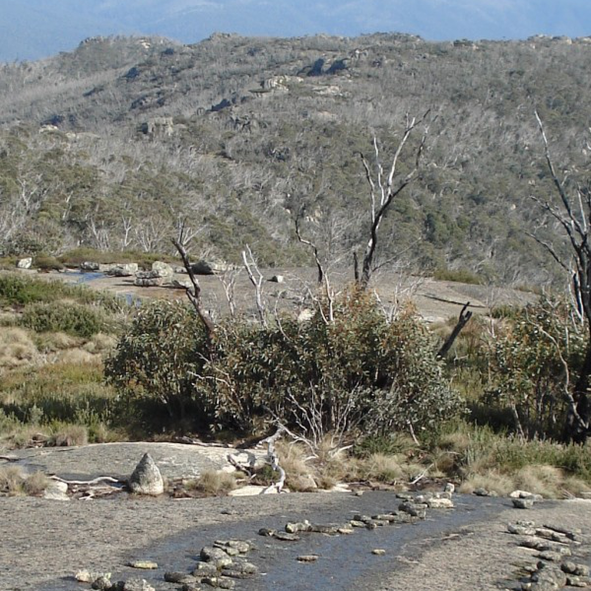 BC Stone arrangements in Namadgi