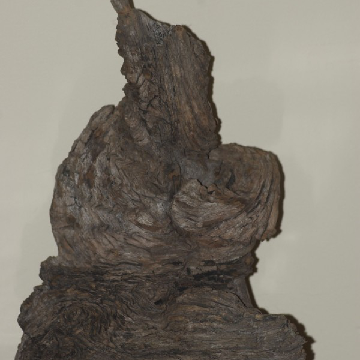 2010 Nature as sculptor