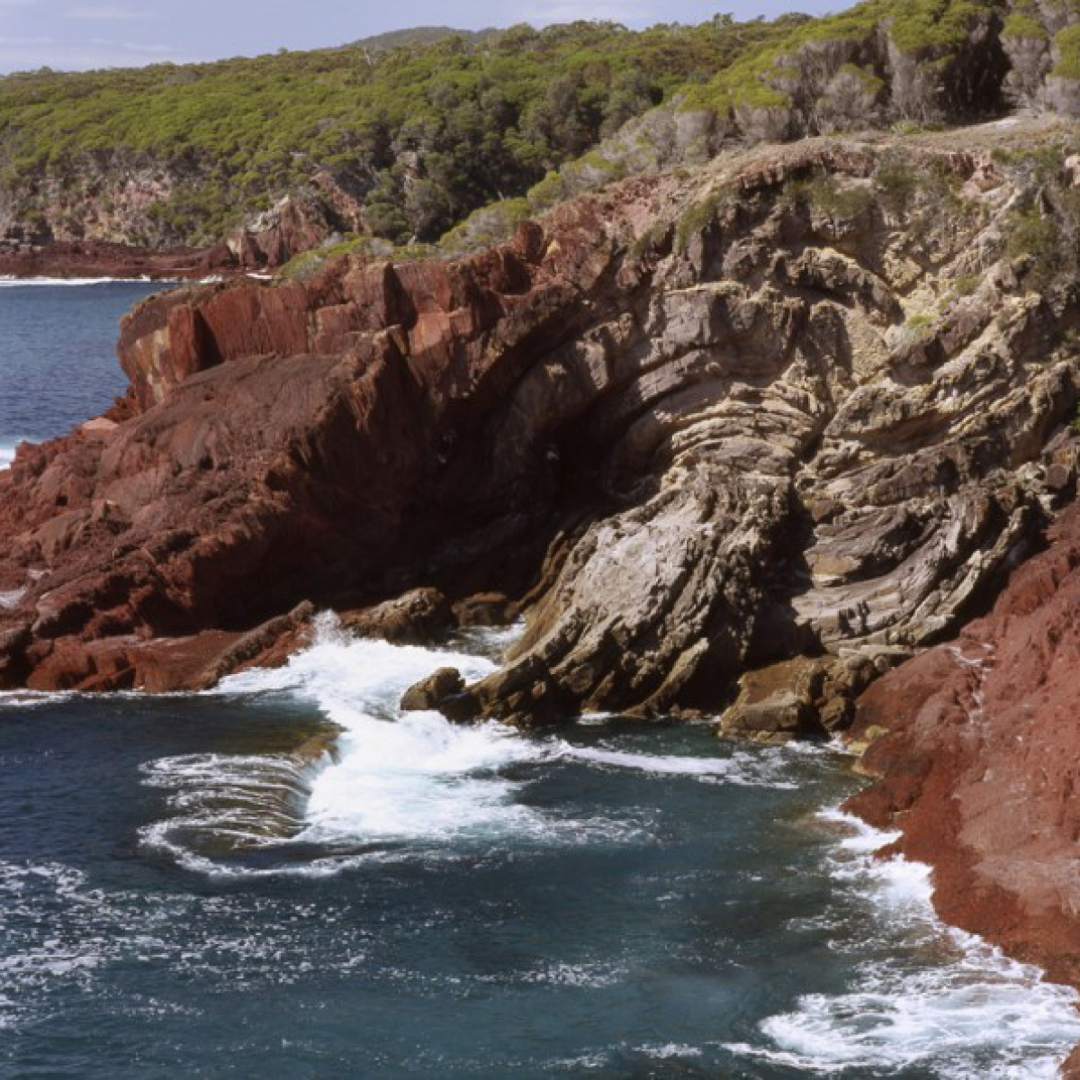Folded rock strata - Ben Boyd National Park