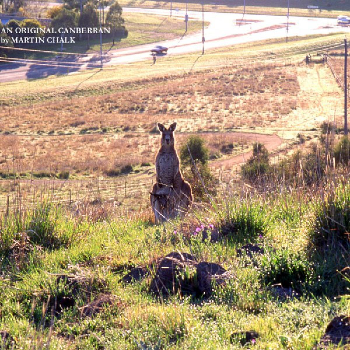 An orginal Canberran