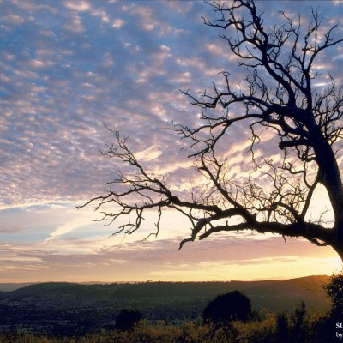 Sunrise on Mount Taylor