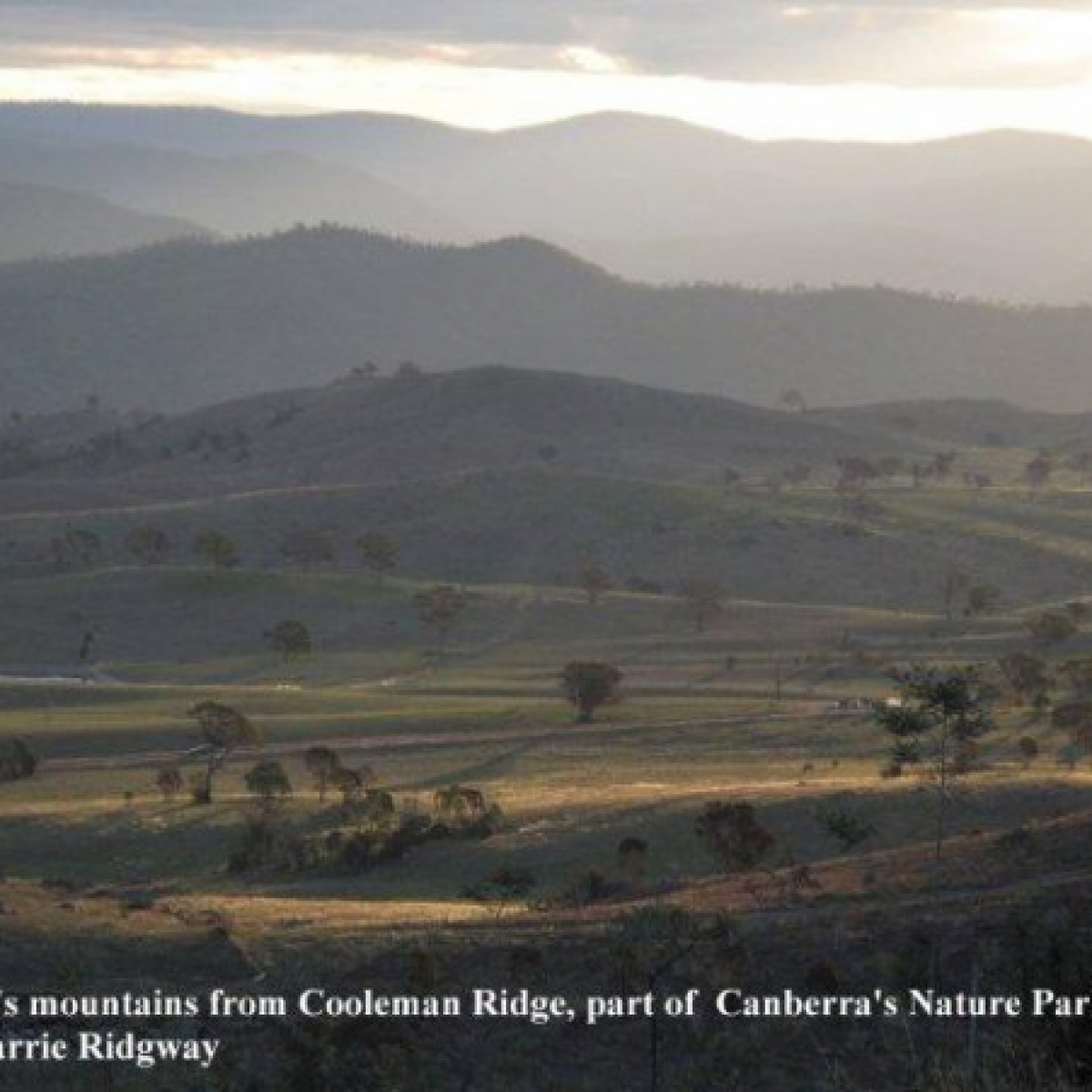 Layers of foothills before the Brindabellas