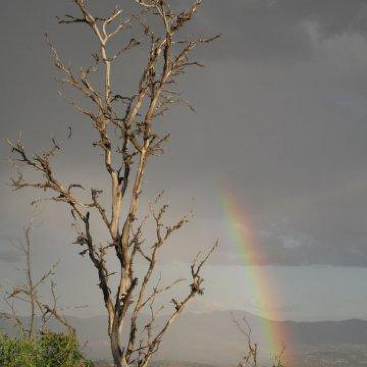 Rainbow over Tuggeranong Valley