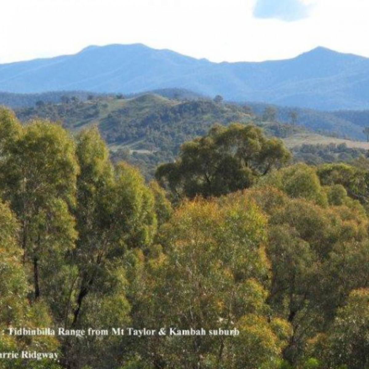 Mt Tidbinbilla from Mt Taylor